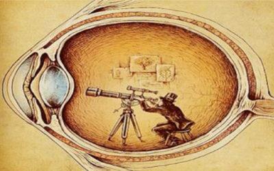 """Vedere da """"dietro"""" gli occhi"""
